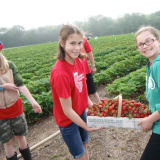 2 Tons Of Fun: Monroe Church Dishes Up Its Annual Strawberry Festival